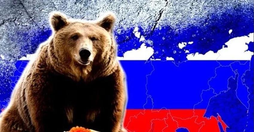 Ответ «цивилизованным» из России!