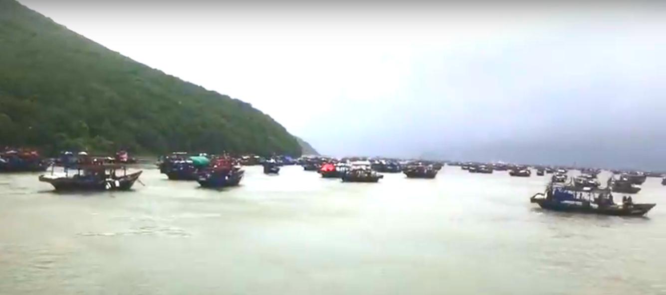 """Более 20 северокорейских моряков спасли российские пограничники после тайфуна """"Джеби"""" в Приморье"""